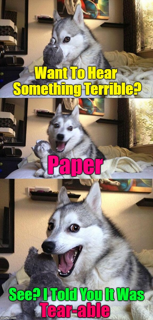 Tʜᴀᴛ's Jᴜsᴛ Nᴏᴛ Wʀɪᴛᴇ  | Want To Hear Something Terrible? Paper See? I Told You It Was Tear-able | image tagged in memes,bad pun dog,bad puns,bad jokes,corny joke | made w/ Imgflip meme maker