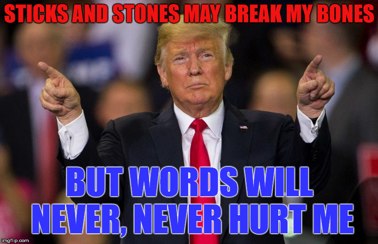 Trump: Sticks & Stones | STICKS AND STONES MAY BREAK MY BONES BUT WORDS WILL NEVER, NEVER HURT ME | image tagged in president trump,sticks  stones,bully,cyberbullying,kids | made w/ Imgflip meme maker