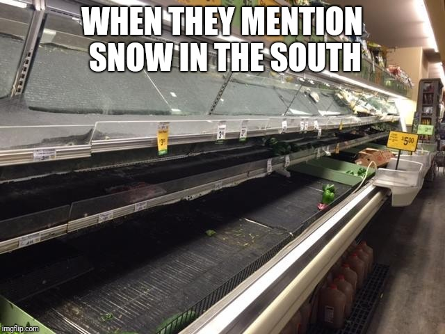 WHEN THEY MENTION SNOW IN THE SOUTH | image tagged in empty grocery store | made w/ Imgflip meme maker