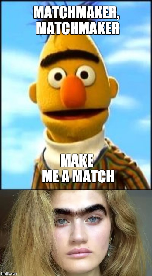 I guess if you're into that sort of thing | MATCHMAKER, MATCHMAKER MAKE ME A MATCH | image tagged in bert and ernie,unique,eyebrows | made w/ Imgflip meme maker