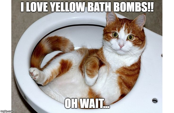 Funny Cat |  I LOVE YELLOW BATH BOMBS!! OH WAIT... | image tagged in funny cat | made w/ Imgflip meme maker