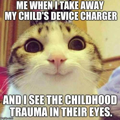 Smiling Cat | ME WHEN I TAKE AWAY MY CHILD'S DEVICE CHARGER AND I SEE THE CHILDHOOD TRAUMA IN THEIR EYES. | image tagged in memes,smiling cat | made w/ Imgflip meme maker