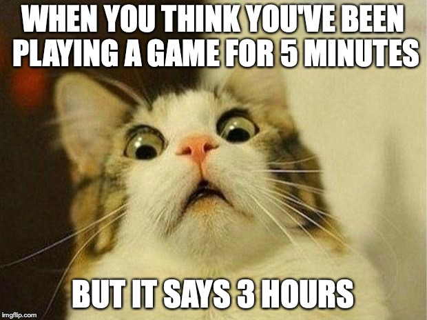 Scared Cat | WHEN YOU THINK YOU'VE BEEN PLAYING A GAME FOR 5 MINUTES BUT IT SAYS 3 HOURS | image tagged in memes,scared cat | made w/ Imgflip meme maker