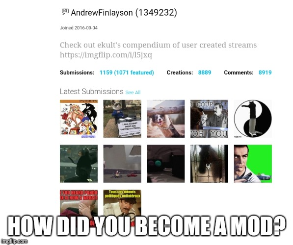 HOW DID YOU BECOME A MOD? | image tagged in curious | made w/ Imgflip meme maker