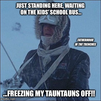 Freezing My Tauntauns Off! | JUST STANDING HERE, WAITING ON THE KIDS' SCHOOL BUS... ...FREEZING MY TAUNTAUNS OFF!! FATHERHOOD IN THE TRENCHES | image tagged in star wars,han solo,winter,school bus | made w/ Imgflip meme maker