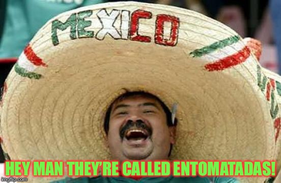 Happy Mexican | HEY MAN THEY'RE CALLED ENTOMATADAS! | image tagged in happy mexican | made w/ Imgflip meme maker