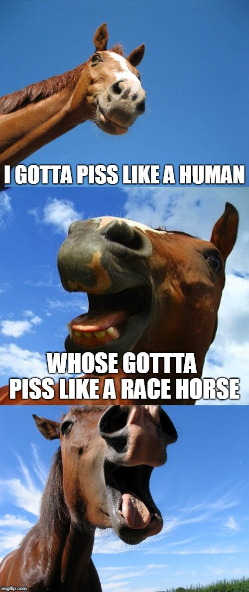 PISS | I GOTTA PISS LIKE A HUMAN WHOSE GOTTTA PISS LIKE A RACE HORSE | image tagged in just horsing around,memes,piss,race,horse,human | made w/ Imgflip meme maker