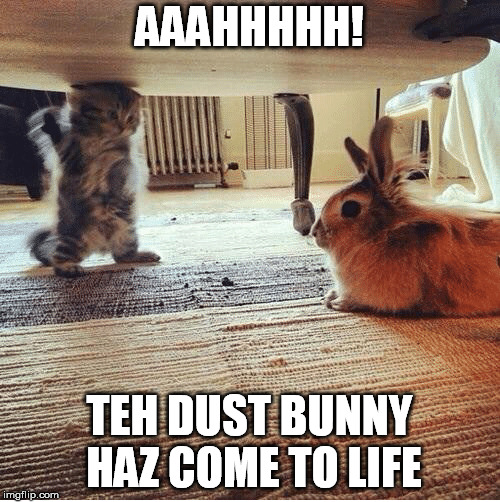 AAAHHHHH! TEH DUST BUNNY HAZ COME TO LIFE | made w/ Imgflip meme maker