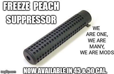 Freeze Peach | NOW AVAILABLE IN 45 & 50 CAL. | image tagged in meme,free speech,silence,noise,moderators | made w/ Imgflip meme maker
