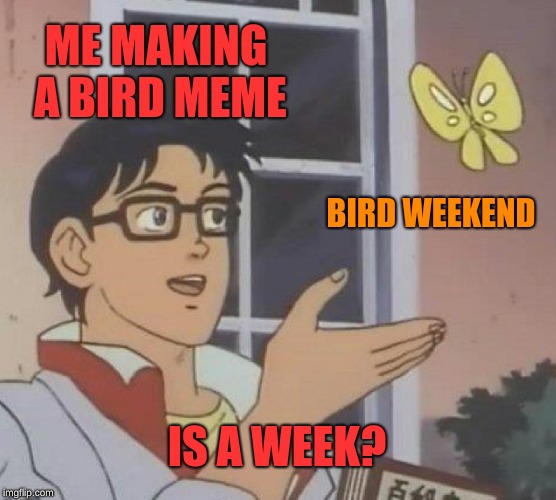 Bird Weekend February 1-3, a moemeobro, Claybourne, and 1forpeace event  | ME MAKING A BIRD MEME BIRD WEEKEND IS A WEEK? | image tagged in memes,is this a pigeon,bird weekend,1forpeace,moemeobro,claybourne | made w/ Imgflip meme maker