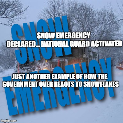 Snow | SNOW EMERGENCY DECLARED... NATIONAL GUARD ACTIVATED JUST ANOTHER EXAMPLE OF HOW THE GOVERNMENT OVER REACTS TO SNOWFLAKES | image tagged in snow,snowflakes,government,donald trump,political humor,humor | made w/ Imgflip meme maker