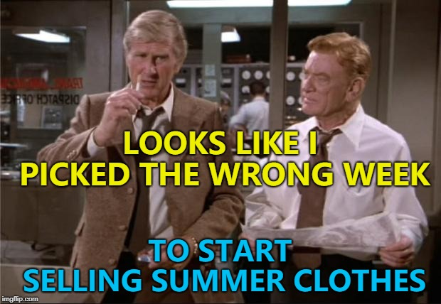 Just what people want right now... :) | LOOKS LIKE I PICKED THE WRONG WEEK TO START SELLING SUMMER CLOTHES | image tagged in airplane wrong week,memes,polar vortex,weather | made w/ Imgflip meme maker