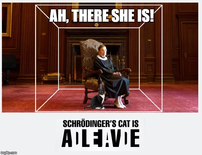 Where is Ruth Bader Ginsburg? | AH, THERE SHE IS! | image tagged in schrodinger,schroginger's cat,ruth bader ginsburg | made w/ Imgflip meme maker