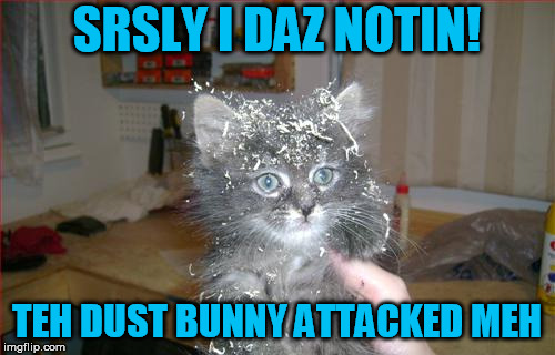 SRSLY I DAZ NOTIN! TEH DUST BUNNY ATTACKED MEH | made w/ Imgflip meme maker