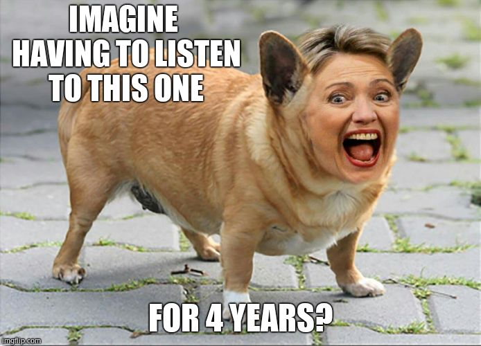 Hilldawg Hillary | IMAGINE HAVING TO LISTEN TO THIS ONE FOR 4 YEARS? | image tagged in hilldawg hillary | made w/ Imgflip meme maker