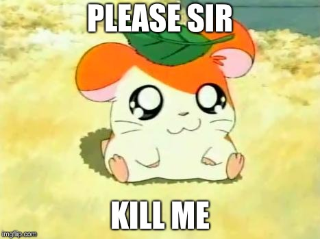 Hamtaro | PLEASE SIR KILL ME | image tagged in memes,hamtaro | made w/ Imgflip meme maker