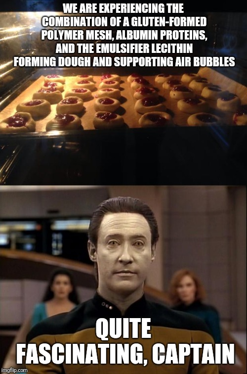 The humans do have one advantage over androids: they can taste cookies ;-) | WE ARE EXPERIENCING THE COMBINATION OF A GLUTEN-FORMED POLYMER MESH, ALBUMIN PROTEINS, AND THE EMULSIFIER LECITHIN FORMING DOUGH AND SUPPORT | image tagged in star trek data,cookies,android,fascinating,eating healthy,baking | made w/ Imgflip meme maker