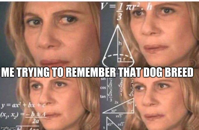 Math lady/Confused lady | ME TRYING TO REMEMBER THAT DOG BREED | image tagged in math lady/confused lady | made w/ Imgflip meme maker