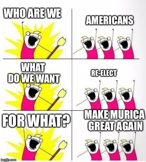 Who are we | WHO ARE WE AMERICANS WHAT DO WE WANT RE-ELECT FOR WHAT? MAKE MURICA GREAT AGAIN | image tagged in who are we,memes,politics,donald trump,2020,murica | made w/ Imgflip meme maker