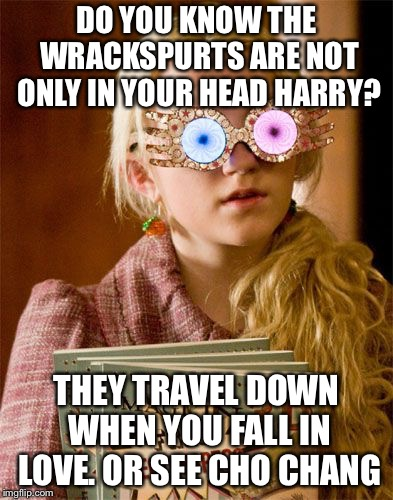 Luna Lovegood and wrackspurts | DO YOU KNOW THE WRACKSPURTS ARE NOT ONLY IN YOUR HEAD HARRY? THEY TRAVEL DOWN WHEN YOU FALL IN LOVE. OR SEE CHO CHANG | image tagged in harry potter,harry potter meme,princess luna,funny memes | made w/ Imgflip meme maker