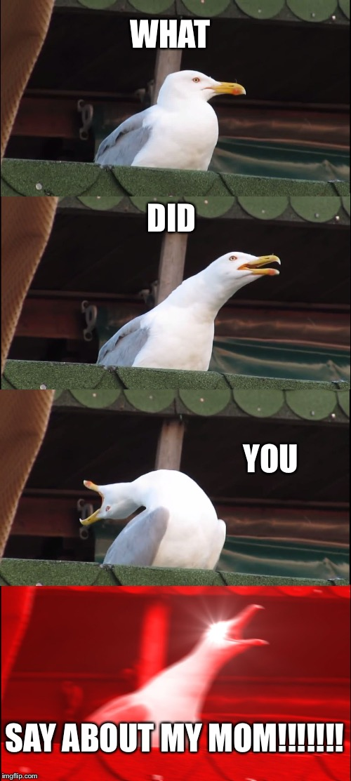 Inhaling Seagull |  WHAT; DID; YOU; SAY ABOUT MY MOM!!!!!!! | image tagged in memes,inhaling seagull | made w/ Imgflip meme maker