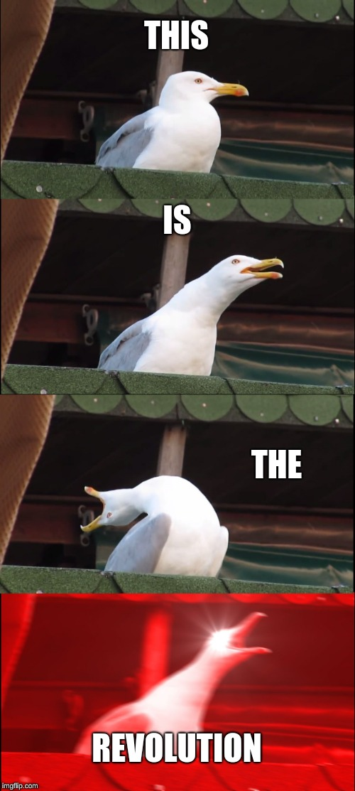 Inhaling Seagull |  THIS; IS; THE; REVOLUTION | image tagged in memes,inhaling seagull | made w/ Imgflip meme maker