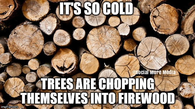 Cold Weather  | image tagged in cold,frostbite,freezing,canada,trees | made w/ Imgflip meme maker