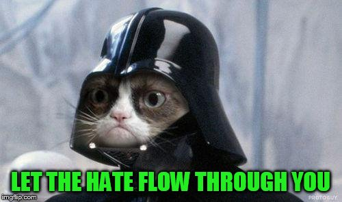 Grumpy Cat Star Wars Meme | LET THE HATE FLOW THROUGH YOU | image tagged in memes,grumpy cat star wars,grumpy cat | made w/ Imgflip meme maker