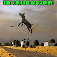 THAT COULD BE DANGEROUS! | image tagged in ass is on the line | made w/ Imgflip meme maker