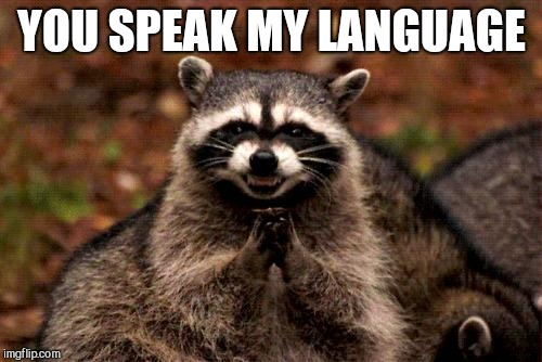 Evil Plotting Raccoon Meme | YOU SPEAK MY LANGUAGE | image tagged in memes,evil plotting raccoon | made w/ Imgflip meme maker