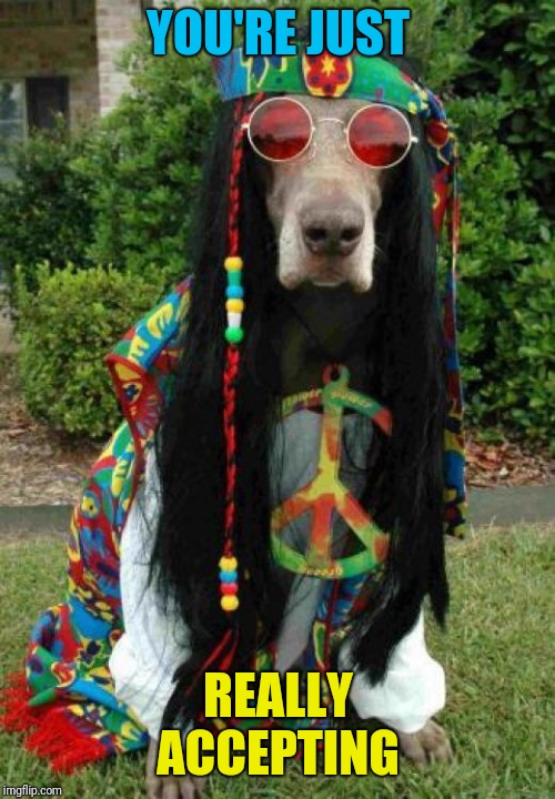 Hippie dog  | YOU'RE JUST REALLY ACCEPTING | image tagged in hippie dog | made w/ Imgflip meme maker