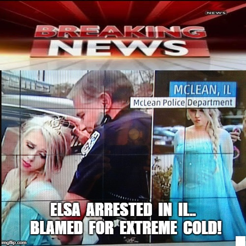 Cold. Cold | ELSA  ARRESTED  IN  IL..  BLAMED  FOR  EXTREME  COLD! | image tagged in elsa,busted | made w/ Imgflip meme maker