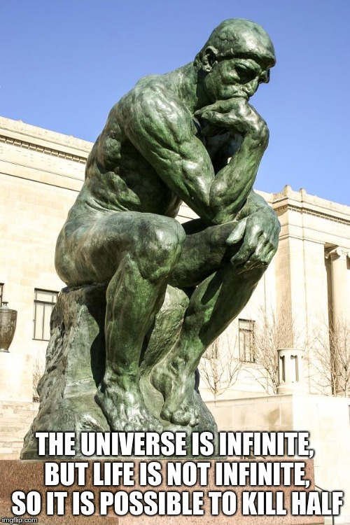 The Thinker | THE UNIVERSE IS INFINITE, BUT LIFE IS NOT INFINITE, SO IT IS POSSIBLE TO KILL HALF | image tagged in the thinker | made w/ Imgflip meme maker