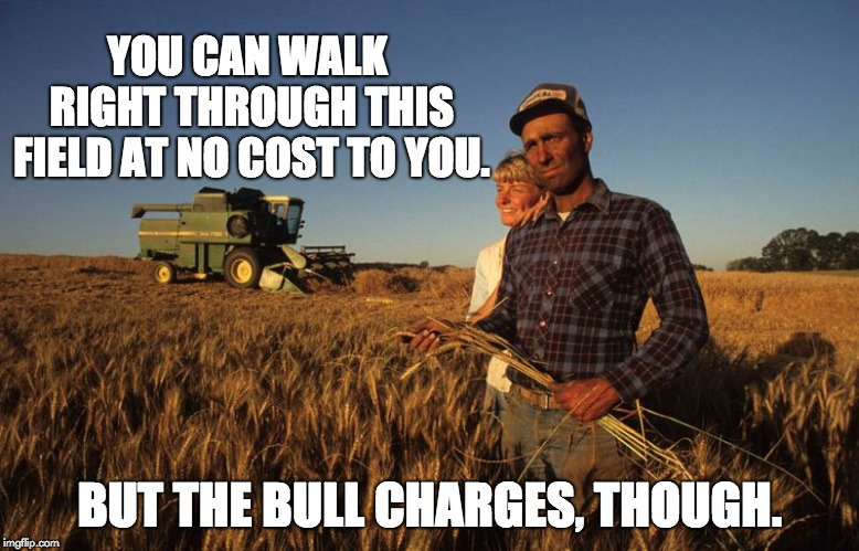 farmer | YOU CAN WALK RIGHT THROUGH THIS FIELD AT NO COST TO YOU. BUT THE BULL CHARGES, THOUGH. | image tagged in farmer | made w/ Imgflip meme maker