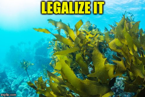LEGALIZE IT | made w/ Imgflip meme maker