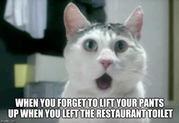 OMG Cat Meme | WHEN YOU FORGET TO LIFT YOUR PANTS UP WHEN YOU LEFT THE RESTAURANT TOILET | image tagged in memes,omg cat | made w/ Imgflip meme maker