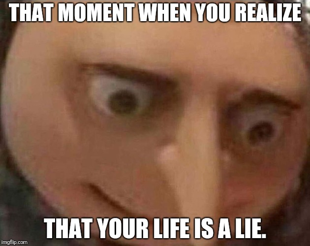 I don't know. :-P | THAT MOMENT WHEN YOU REALIZE THAT YOUR LIFE IS A LIE. | image tagged in gru meme,true lies,life | made w/ Imgflip meme maker