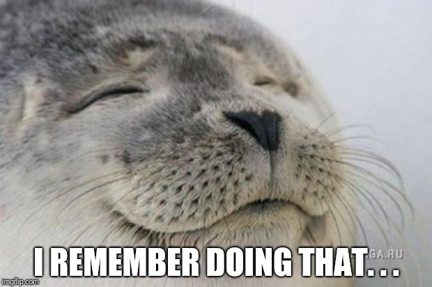 Happy Seal | I REMEMBER DOING THAT. . . | image tagged in happy seal | made w/ Imgflip meme maker