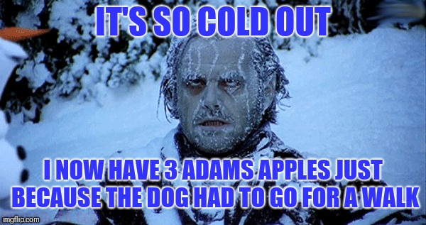 Freezing cold |  IT'S SO COLD OUT; I NOW HAVE 3 ADAMS APPLES JUST BECAUSE THE DOG HAD TO GO FOR A WALK | image tagged in freezing cold | made w/ Imgflip meme maker
