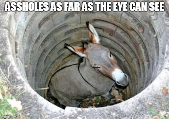ass hole | ASSHOLES AS FAR AS THE EYE CAN SEE | image tagged in ass hole | made w/ Imgflip meme maker
