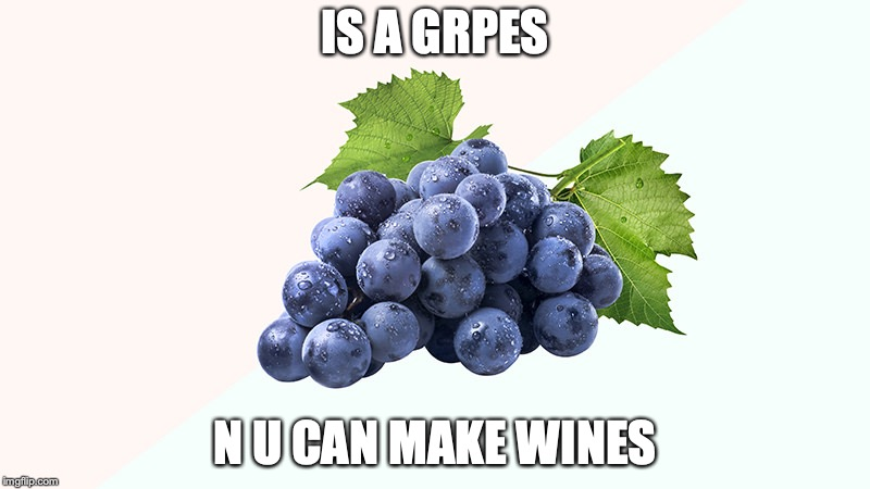 the WIneygrap | IS A GRPES N U CAN MAKE WINES | image tagged in grapes,wine | made w/ Imgflip meme maker