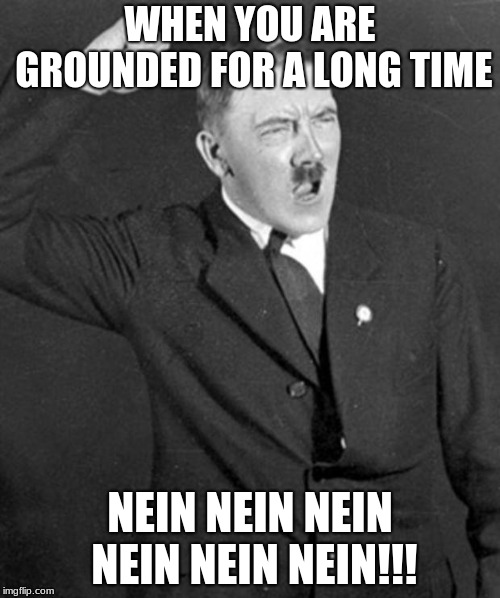 When you get grounded | WHEN YOU ARE GROUNDED FOR A LONG TIME NEIN NEIN NEIN NEIN NEIN NEIN!!! | image tagged in angry hitler,ww2,funny,memes,meme,nein | made w/ Imgflip meme maker