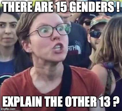 Angry Liberal | THERE ARE 15 GENDERS ! EXPLAIN THE OTHER 13 ? | image tagged in angry liberal | made w/ Imgflip meme maker