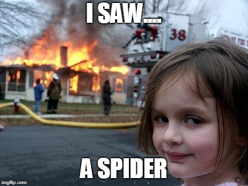 Disaster Girl |  I SAW.... A SPIDER | image tagged in memes,disaster girl | made w/ Imgflip meme maker