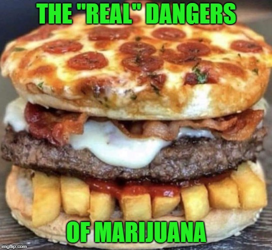 "I don't know what it is but I sure want to eat it!!! |  THE ""REAL"" DANGERS; OF MARIJUANA 