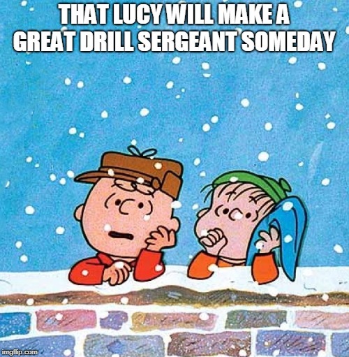 Charlie Brown and Linus | THAT LUCY WILL MAKE A GREAT DRILL SERGEANT SOMEDAY | image tagged in charlie brown and linus | made w/ Imgflip meme maker