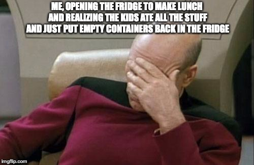 Captain Picard Facepalm Meme | ME, OPENING THE FRIDGE TO MAKE LUNCH AND REALIZING THE KIDS ATE ALL THE STUFF AND JUST PUT EMPTY CONTAINERS BACK IN THE FRIDGE | image tagged in memes,captain picard facepalm | made w/ Imgflip meme maker