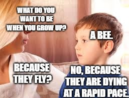 The aspirations of a child | WHAT DO YOU WANT TO BE WHEN YOU GROW UP? NO, BECAUSE THEY ARE DYING AT A RAPID PACE. BECAUSE THEY FLY? A BEE. | image tagged in funny,kids,beating the system | made w/ Imgflip meme maker