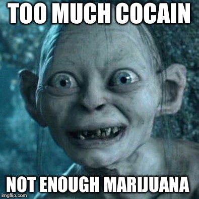 Gollum |  TOO MUCH COCAIN; NOT ENOUGH MARIJUANA | image tagged in memes,gollum | made w/ Imgflip meme maker