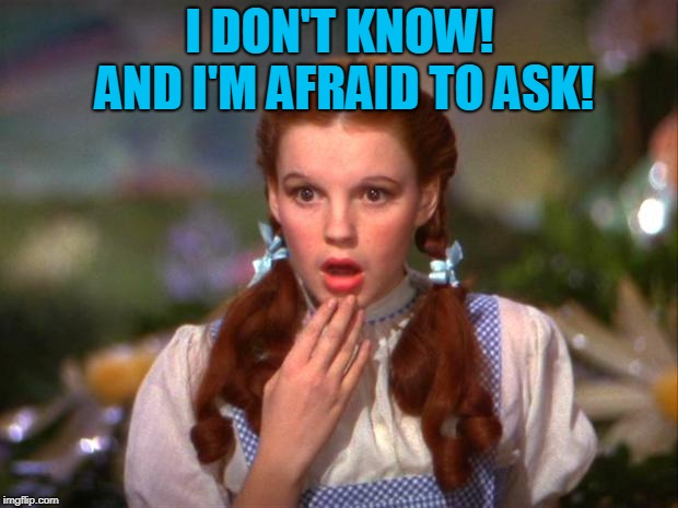 Dorothy | I DON'T KNOW! AND I'M AFRAID TO ASK! | image tagged in dorothy | made w/ Imgflip meme maker